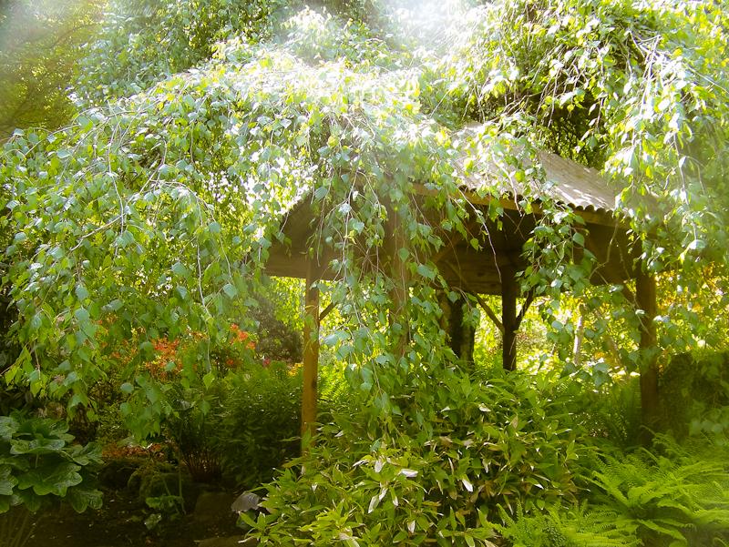Japanese Garden, Butchart Gardens, British Columbia