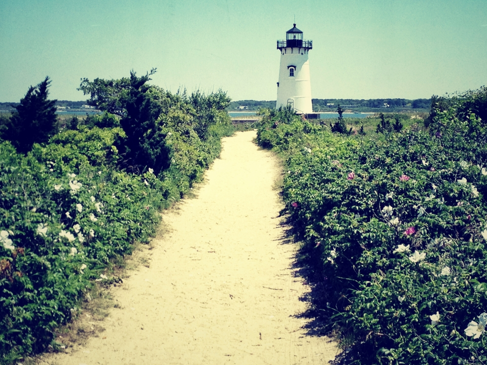 https://www.etsy.com/listing/124253543/marthas-vineyard-edgartown-lighthouse?ref=v1_other_2