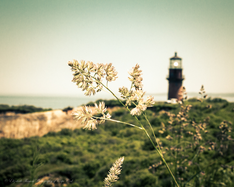 https://www.etsy.com/listing/124146681/gay-head-lighthouse-photography-marthas?ref=v1_other_2