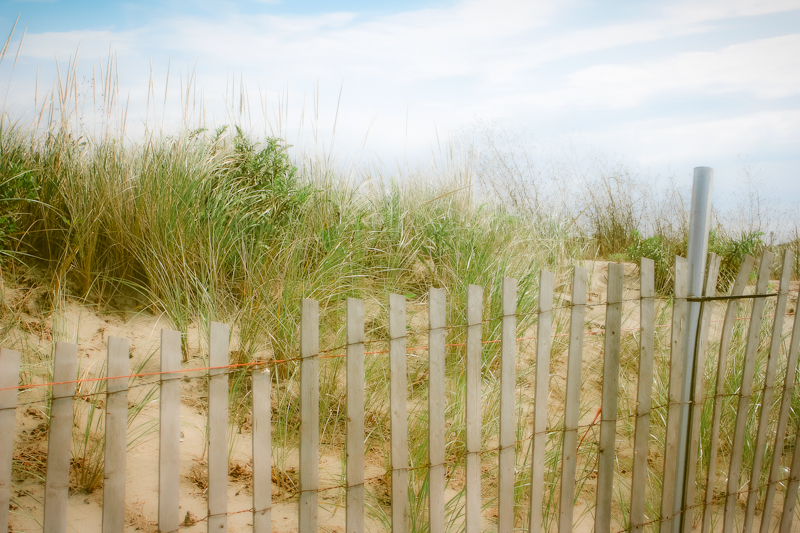 Beach fence, Cape Cod - Available for purchase on ETSY
