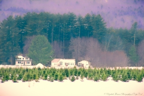 Fryeburg Maine. Print available for purchase on ETSY