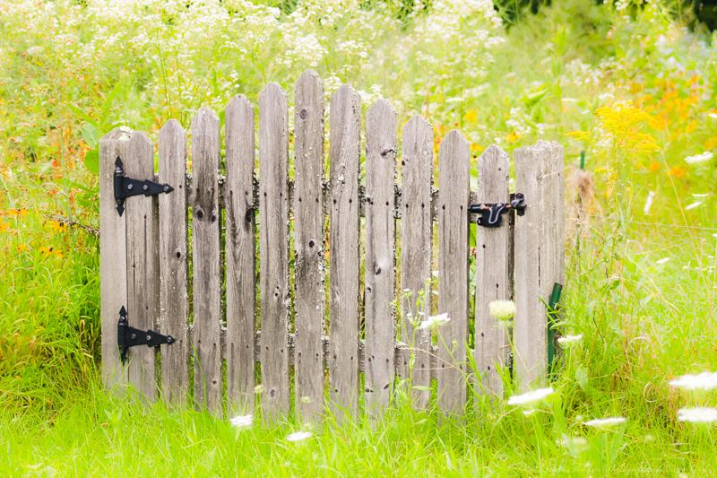 https://www.etsy.com/listing/199704423/the-garden-gate-maine-fine-art?ref=listing-7