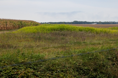 Fields beyond fence