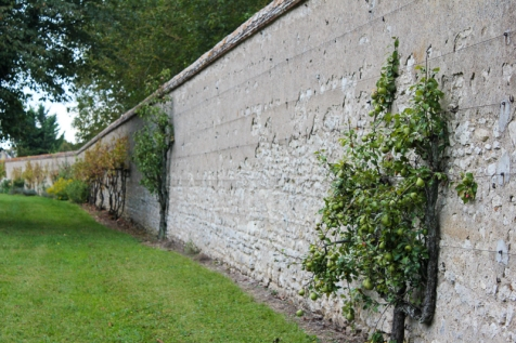 Stone wall surrounding property