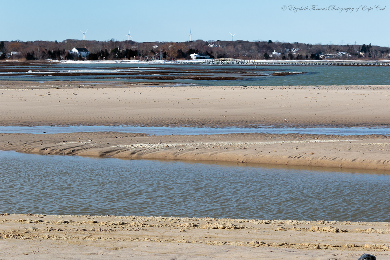 Here is a view from the marsh side of the beach looking back towards the boardwalk bridge. You can see where the breach flows through and you can see the new sandbar created in the back ground. The river used to cut right through the middle of that sandbar.